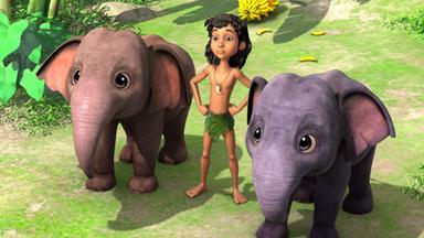 Das Dschungelbuch - Das Dschungelbuch: Das Unsichtbare Menschenkind