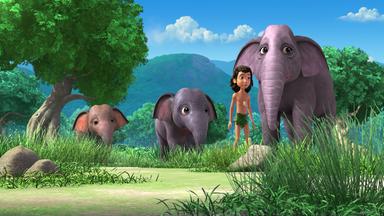 Das Dschungelbuch - Das Dschungelbuch: Wo Ist Appu?