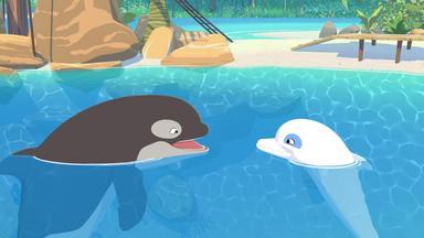 Zoom - Der Weiße Delfin - Zoom - Der Weiße Delfin: Staffel 2: Eine Familie Für Billy