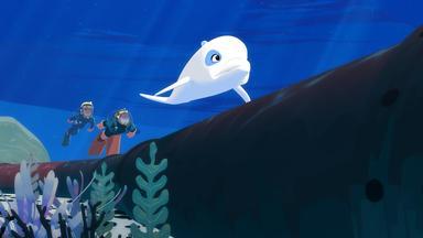 Zoom - Der Weiße Delfin - Zoom - Der Weiße Delfin: Die ölpest