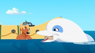 Zoom - Der Weiße Delfin - Zoom - Der Weiße Delfin: Ein Delfin Aus Der Urzeit