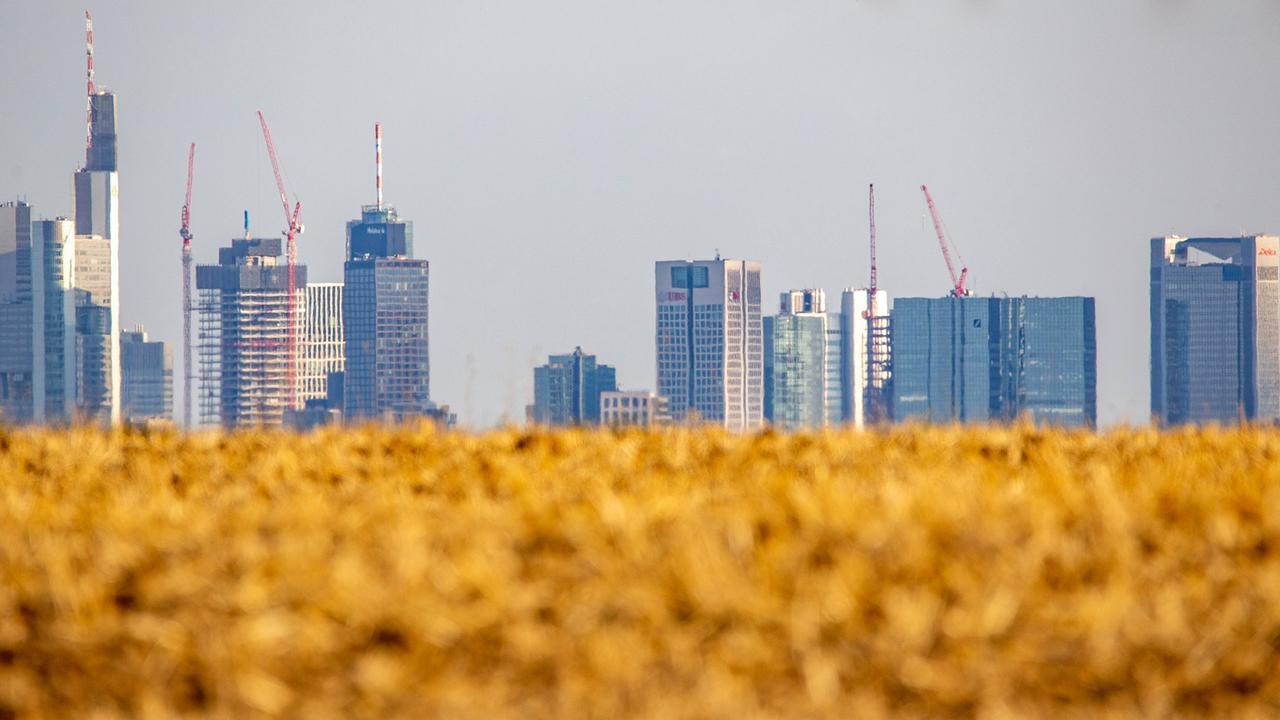 Rekordjahr 2018 Heißes Frankfurt Sonniges Berlin Zdfmediathek