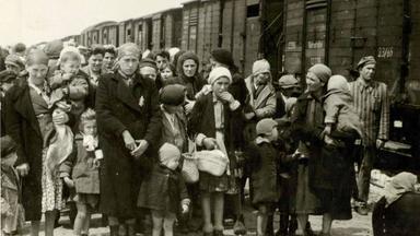 Zdfinfo - Frauen Im Nationalsozialismus: Entrechtung Und Verfolgung