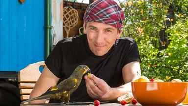 Löwenzahn - Löwenzahn: Papagei