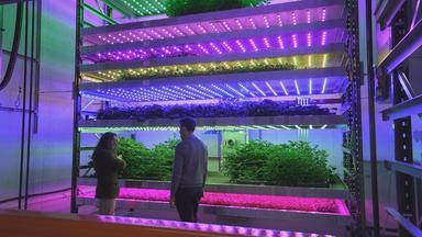 Zdfinfo - Genial Konstruiert: Technik In Der Landwirtschaft