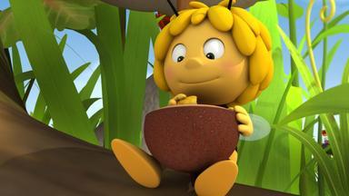 Die Biene Maja: Abenteuer Auf Der Klatschmohnwiese - Die Biene Maja: Das Geschmackvolle Geschenk