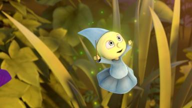 Kleine Lustige Krabbler - Kleine Lustige Krabbler: Glorias Großer Tag