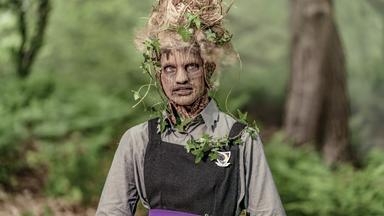 Eine Lausige Hexe - Eine Lausige Hexe: Grüne Hexen