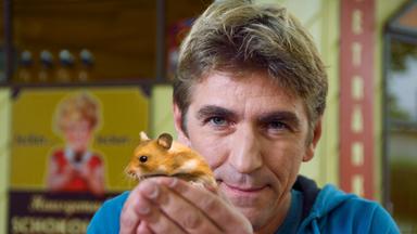 Löwenzahn - Löwenzahn: Hamster