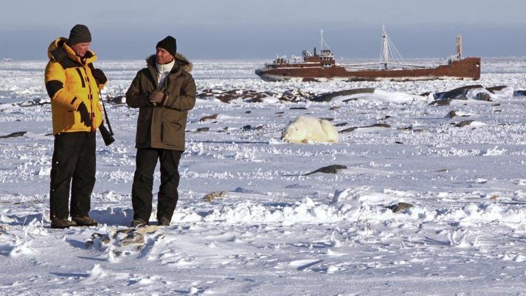 Hannes Jaenicke im Einsatz für Eisbären