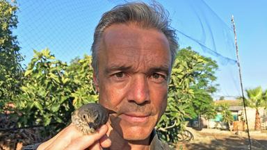 Dokumentation - Hannes Jaenicke: Im Einsatz Für Vögel