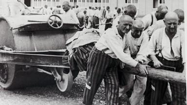 Zdfinfo - Hitlers Sklaven - Geschichte Der Ns-zwangsarbeiter: Ausbeutung