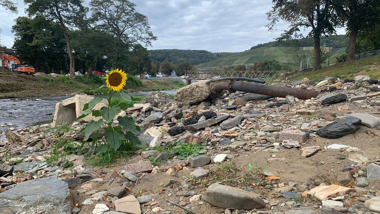 Ahrweiler 2021 nach der Flutkatastrophe - cover