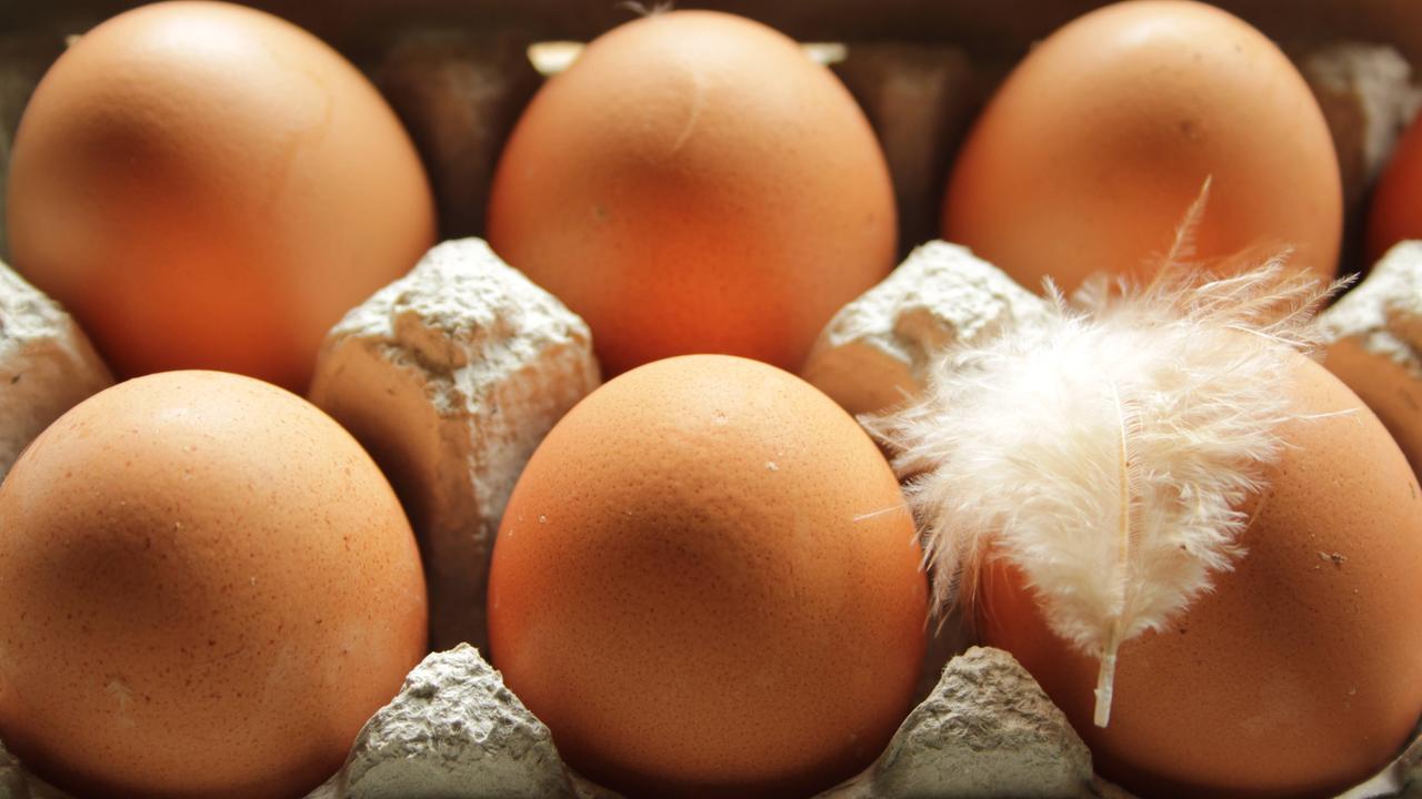 Liebes Ei