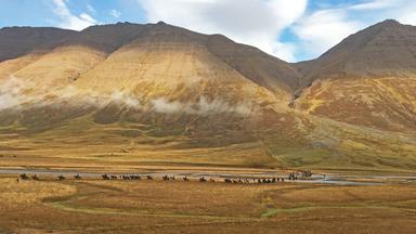 Dokumentation - Ausgerechnet Island