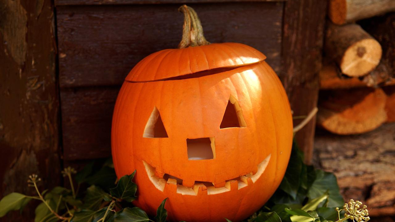 Tolle Kostenlose Halloween Kürbis Vorlagen Ideen - Entry Level ...