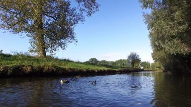 Flusslandschaft am Niederrhein