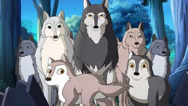 Lassie - Lassie: Das Wolfsrudel