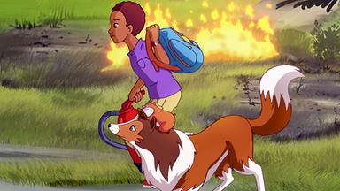Lassie - Lassie: Der Waldbrand