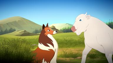 Lassie - Lassie: Kleiner Büffel - Großes Wunder