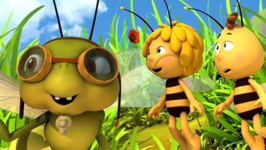 Die Biene Maja: Abenteuer Auf Der Klatschmohnwiese - Die Biene Maja: Libellenflatterflitzeflug