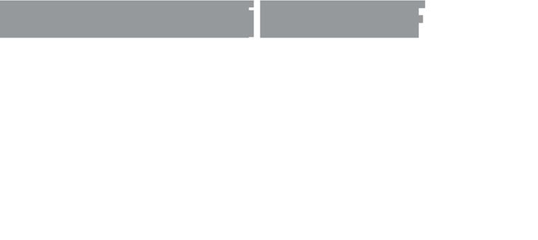 Karneval im ZDF - Logo grey