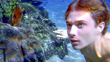 Diese Seite Wurde Leider Nicht Gefunden - Mako - Einfach Meerjungfrau: Die Fünf Symbole