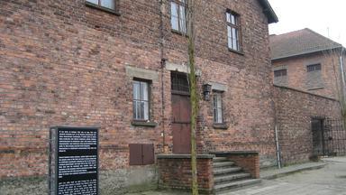 Zdfinfo - Medizinische Experimente In Auschwitz