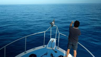 Zdfinfo - Mythos - Die Größten Rätsel Der Geschichte: Das Bermudadreieck