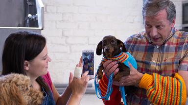 Wuffel, Der Wunderhund - Wuffel, Der Wunderhund: Ein Neues Zuhause Für Penny