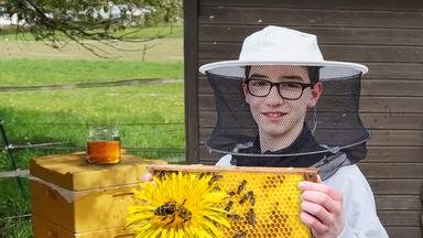 Pur+ - Das Entdeckermagazin Mit Eric Mayer - Pur+ Rettet Die Bienen