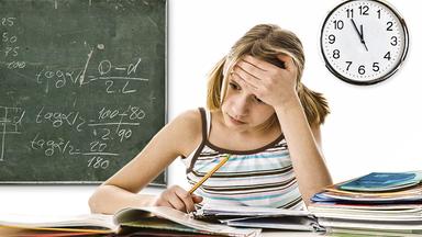 Pur+ - Das Entdeckermagazin Mit Eric Mayer - Pur+: Schulstress - Nein Danke!