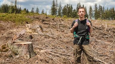 Pur+ - Das Entdeckermagazin Mit Eric Mayer - Pur+ Rettet Den Wald!