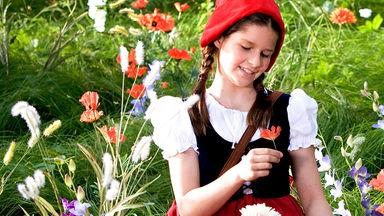 Märchenperlen: Märchen Bei Zdftivi - Märchenperlen: Rotkäppchen