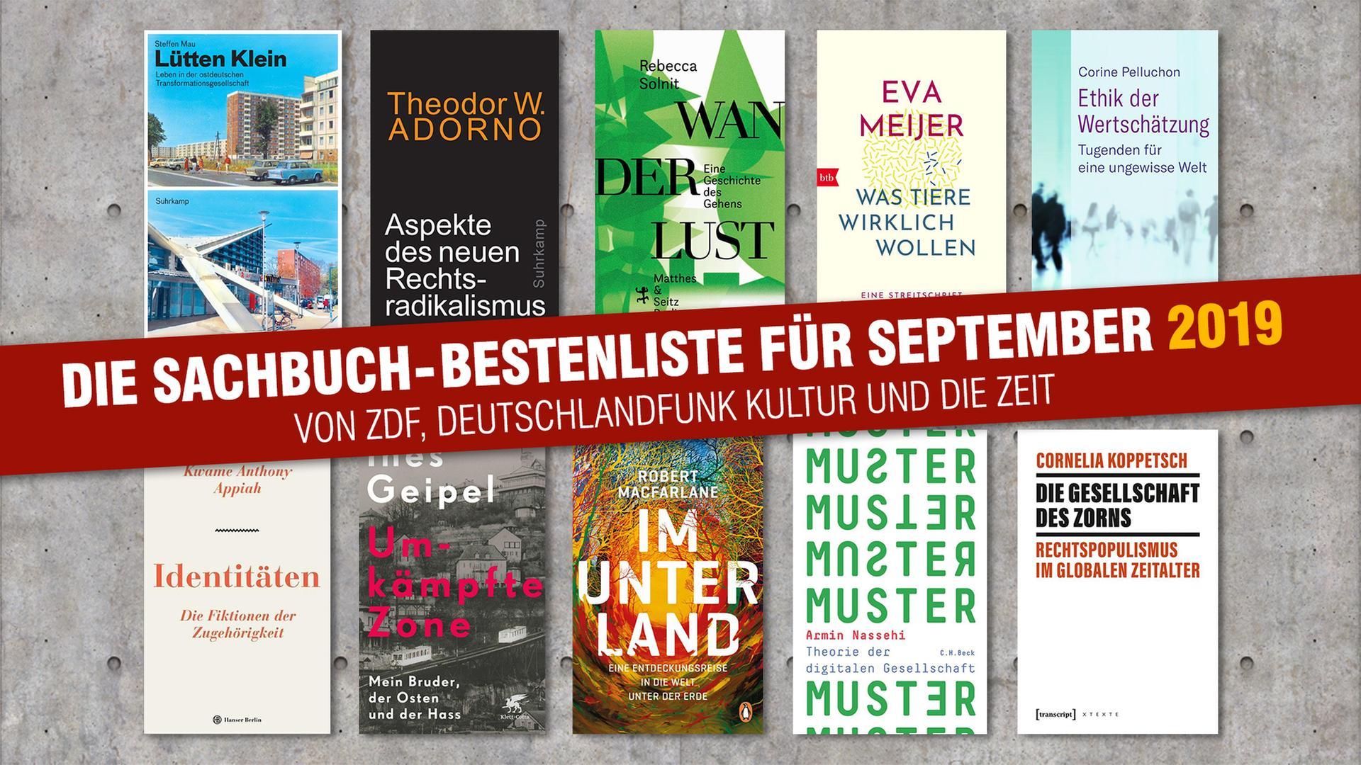 Sachbuch Bestenliste Neue Fassung September
