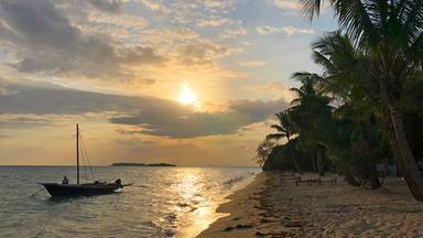 Dokumentation - Sansibar - Afrikas Wilde Schönheit