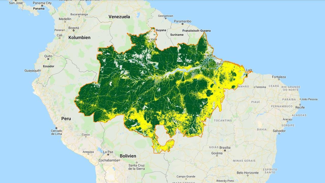 Abholzung im Amazonas Satellitendaten
