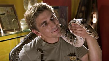 Löwenzahn - Löwenzahn: Schlangen