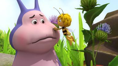 Die Biene Maja: Abenteuer Auf Der Klatschmohnwiese - Die Biene Maja: Der Schleimlose Heinz