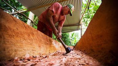 Zdfinfo - Schutzprojekt Erde: Polynesien