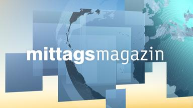 Zdf-mittagsmagazin -