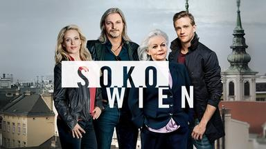 Soko Wien - Familie Schweiger