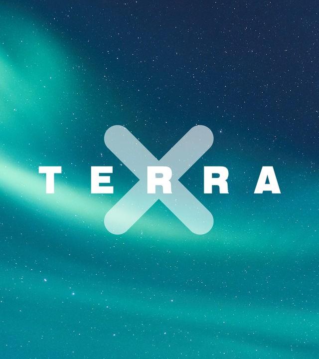 Terra X - Das Web