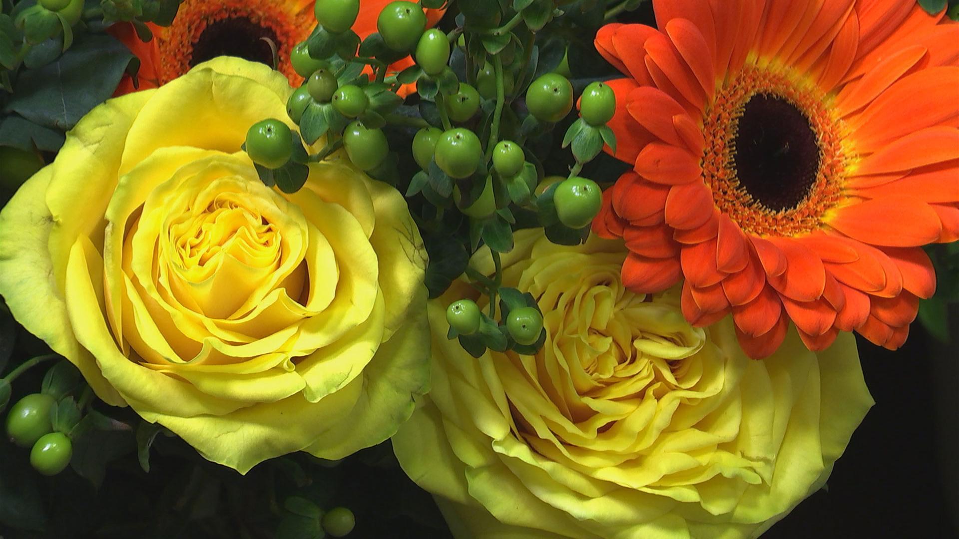 Blumenversand Im Test Zdfmediathek