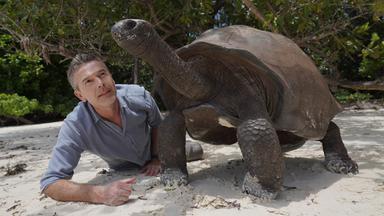 Terra X Dokumentationen Und Kurzclips - Faszination Erde: Seychellen