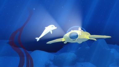 Zoom - Der Weiße Delfin - Zoom - Der Weiße Delfin: Signal Aus Der Tiefe