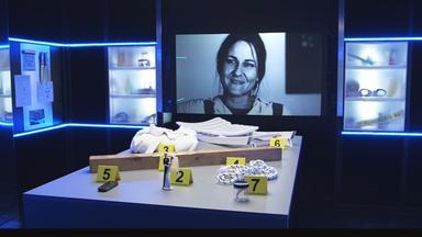 Zdfinfo - Täterjagd: Der Fall Chantal Ternik