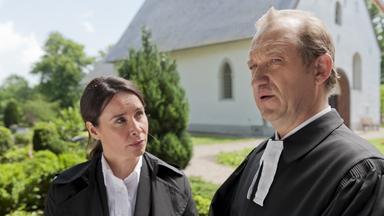 Filme - Nägel Mit Köppen