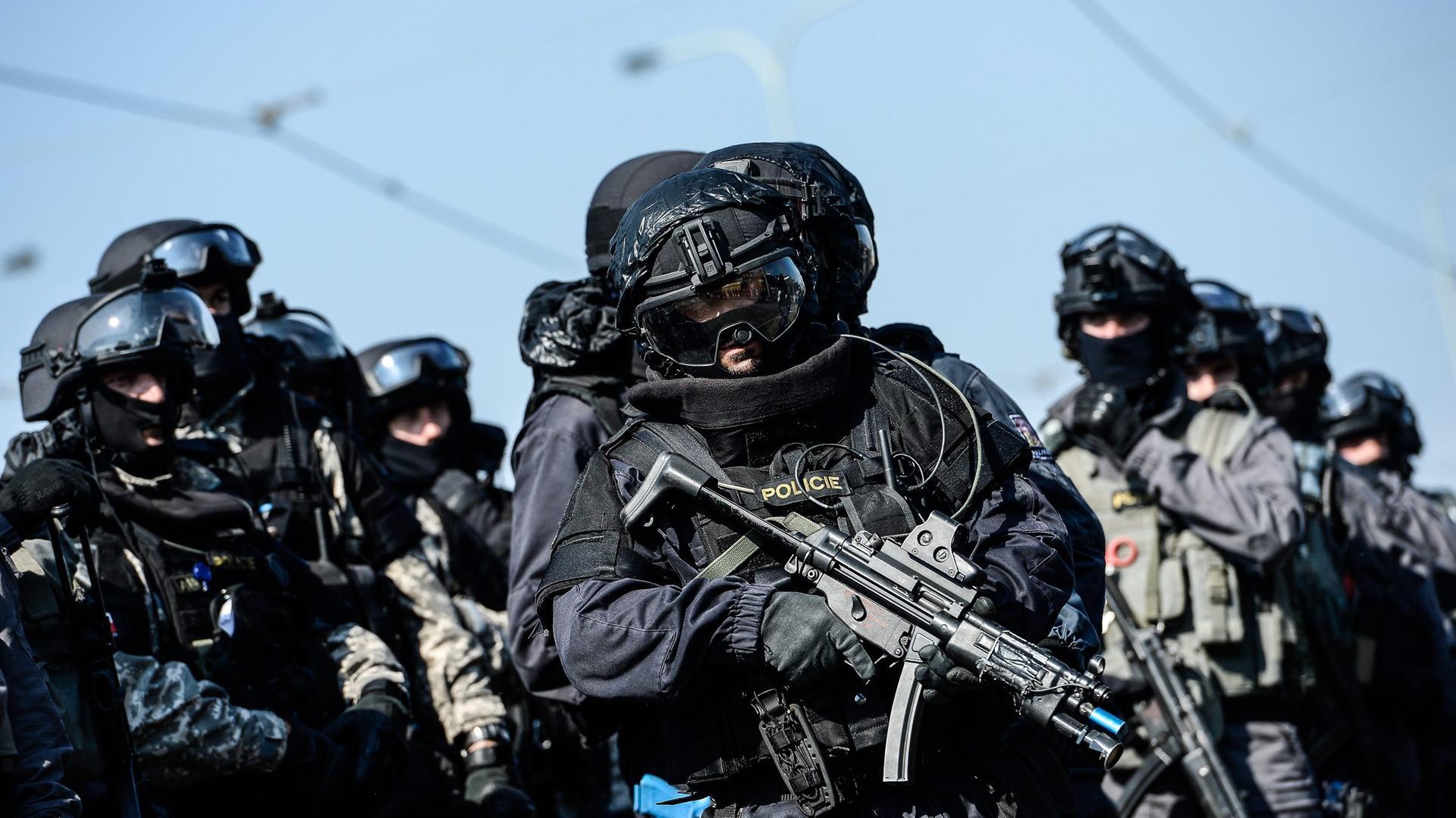 Spezialkräfte der tschechischen Polizei. Archivbild