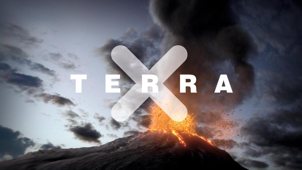 Tera X